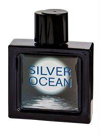 Omerta Silver Ocean Masculino Eau de Toilette 100ml