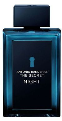 The Secret Night 100ml - Perfume Masculino - Eau De Toilette